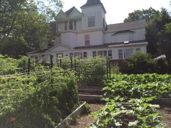 Rent Party Garden