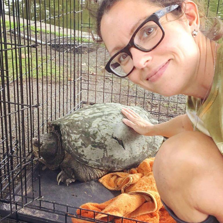 Linda Beck pets a turtle
